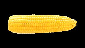 hidden sugars corn