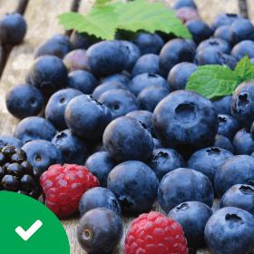 Low Carb Snacks Berries